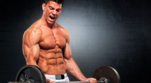 build lean muscle fast